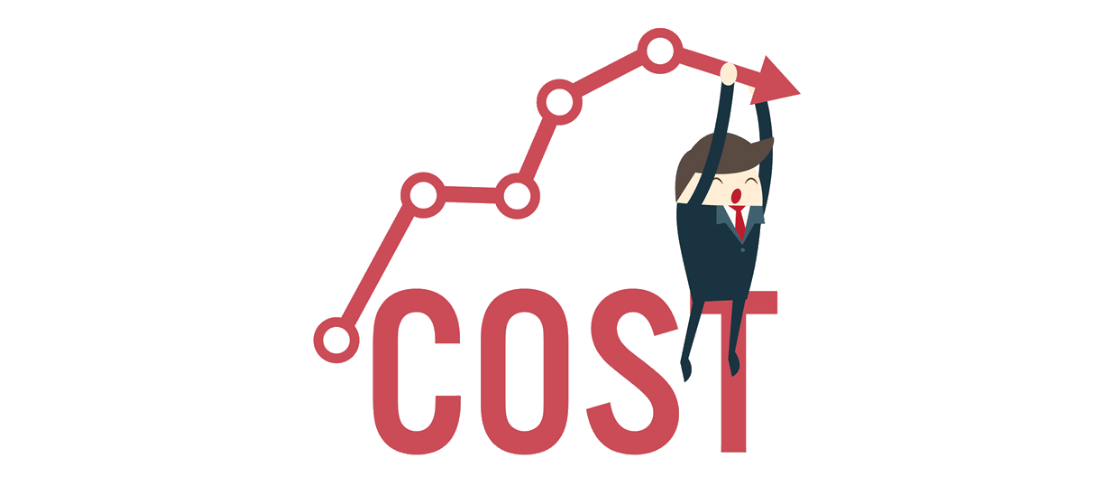 What does custom software development cost?